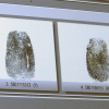 State Fingerprint System Flawed, More Expensive To Maintain Than To Build