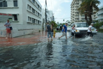 Flooding in Miami Beach. Low-lying Florida is the state most suscpeible to the effects of climate change. (Photo: Flickr.)